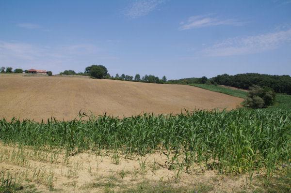 La ferme de Picana depuis Le Terme