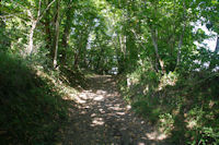 Joli chemin au sortir de Salleneuve