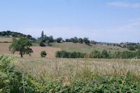 Le GR86 pres de Lassere de Mauboussin a l'oree du bois, au loin on devine le Pic du Midi de Bigorre