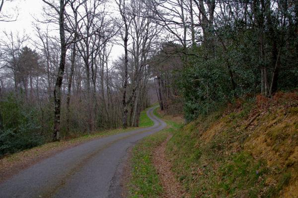 La route menant à Picon