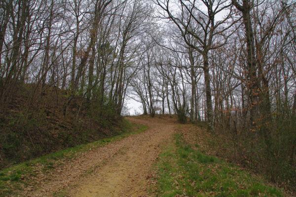 Le chemin menant à Picon