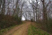 Le chemin menant a Picon