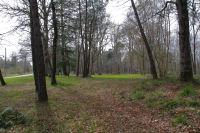 En entrant dans le Bois d'Aliot sur l'ancienne voie romaine Toulouse - Tarbes