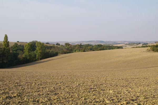Le Lauragais depuis Pélimbert