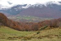 Le Bois de la Prèze