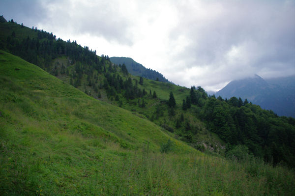 Le chemin à Sayette