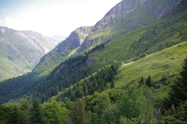 Le sentier au dessus de la Sapinière de Laubère
