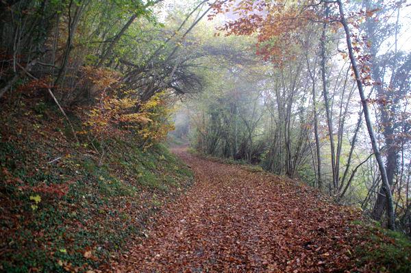 Le chemin de la Reine Hortence (GR10)