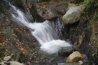 Le ruisseau du Laun devalant vers Arrens