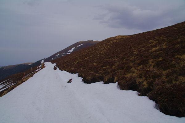 Le chemin sous le Mont Mérag, au fond, le Pic de Mont Aspet