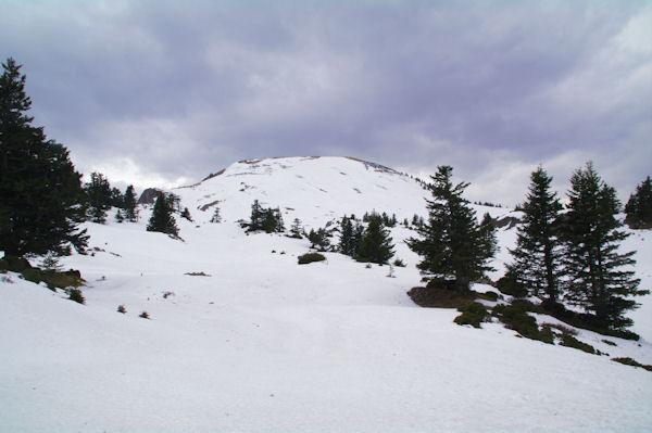 Le Cap Nestès