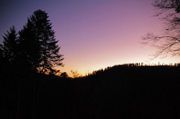 Lever de soleil dans le Bois de la Plape