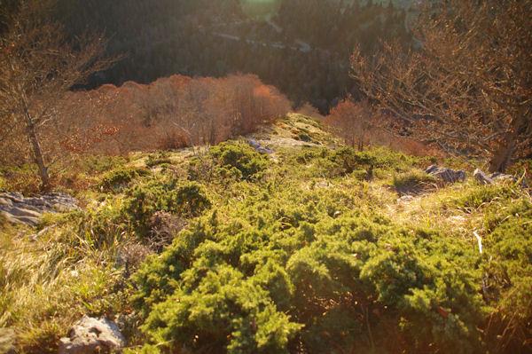 La rude montée au Pic de Bazès