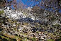 La montee au Pic de Navaillo dans les bois