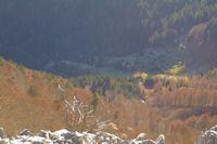 Le refuge du Haugarou et le Bois de la Plape