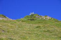 La crete Nord du Pic de Bergons
