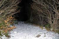 Dans le bois sous les Goules