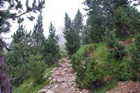 Le chemin montant vers Pé det Malh