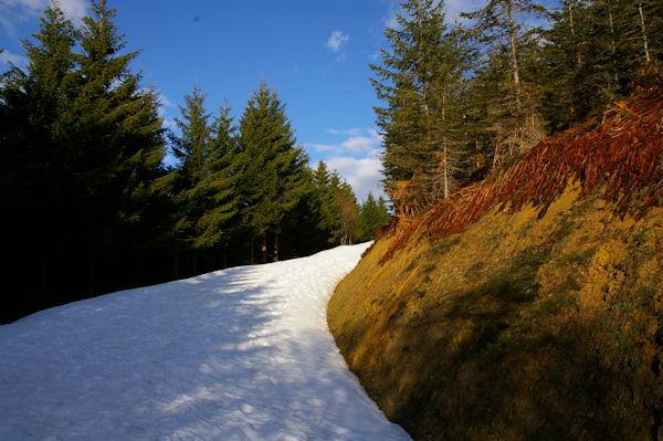 Le chemin montant au Col de la Serre