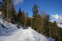 Le chemin montant au Col de Bazes