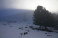 Le soleil joue avec la brume sous le Cap Nestes