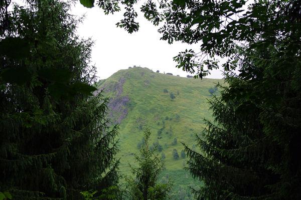 Le Pic de Prédouset depuis la sapinière