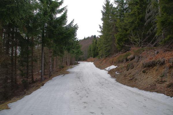 La montée vers le Col de la Serre