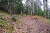 Le chemin remontant vers le Col de Couret