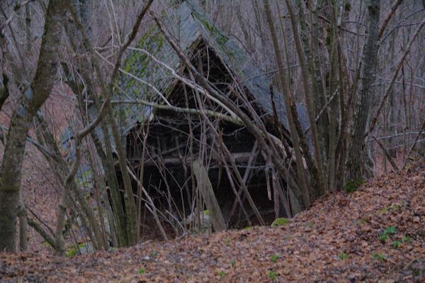 Une grange à Curedus dans la forêt