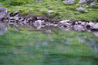 Les eaux vertes du Lac de Suyen