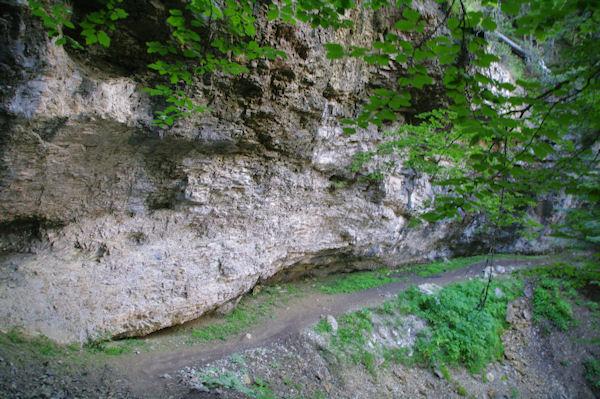 Le sentier à flanc au dessus du Bois d_Arribama