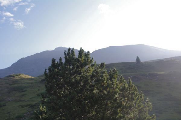 Le Piméné depuis le plateau de Pailla