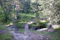 La passerelle pour passer rive gauche du ruisseau de Pailla
