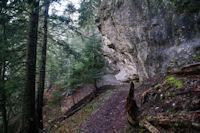 Le chemin sous le Bederou