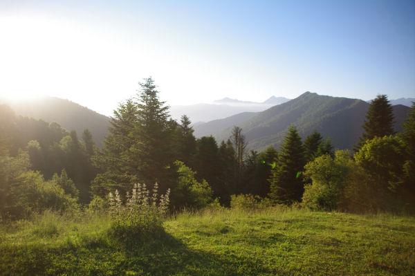 La vallée du Bergons depuis le Col de Spandelles