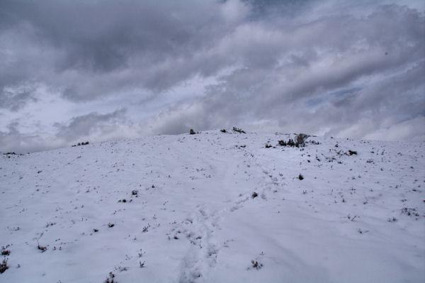 Le sommet de la crête de Penaube