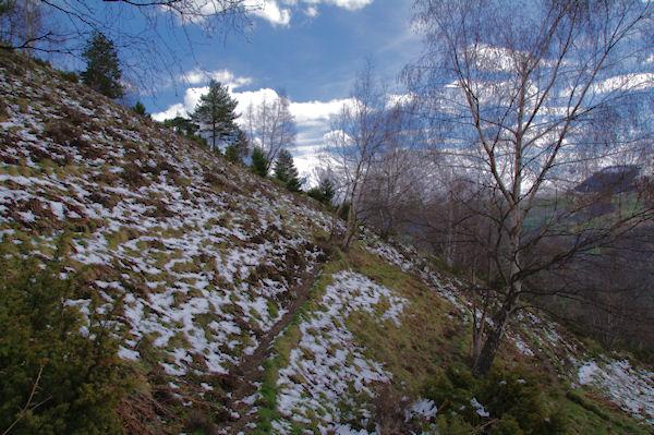 Le sentier sous les crêtes de Penaube
