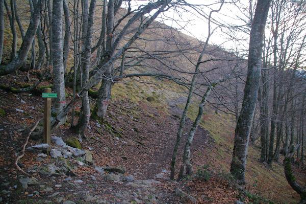 L_embranchement pour partir vers le Col d_Andorre