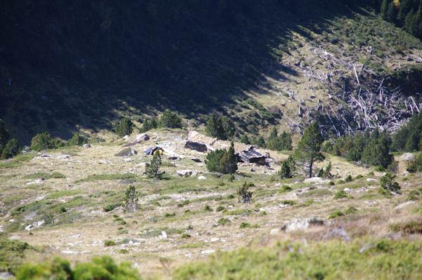La cabane de Lustou en cours de rénovation