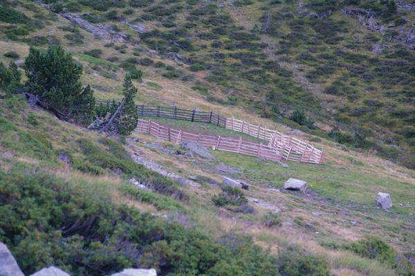 Un parc à mouton au dessus de la cabane de Lustou