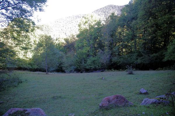 Au loin, dans la lumière, le vallon du ruisseau de l_Artigue depuis le chemin de Sarradaus