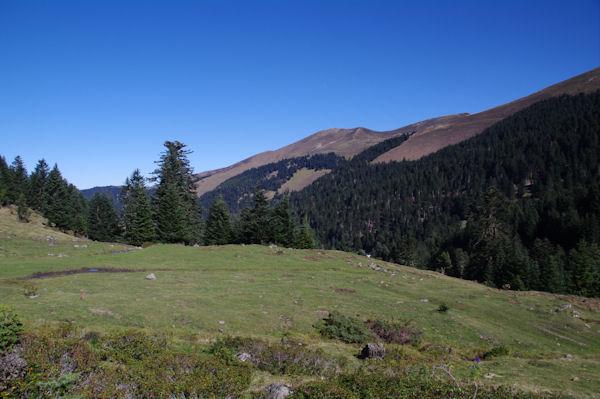 Vers la Cabane d_Artigue Longue, au fond, le Sommet du Peberé, le Sommet de Templa ou de Cornudère et la Crête de Berne