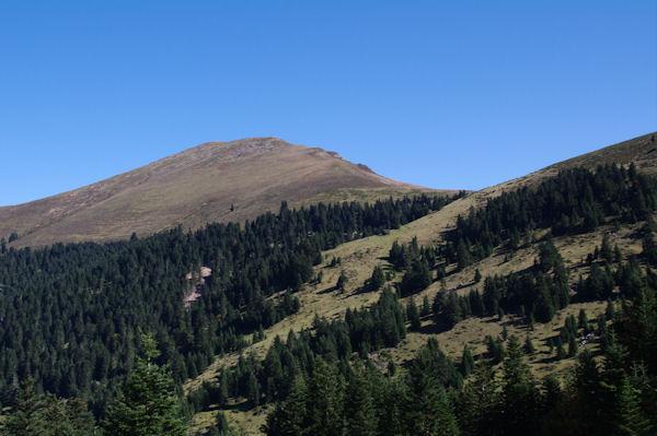 Le Mont Né et le Port de Pierrefite au dessus de la Sapinière de Berne