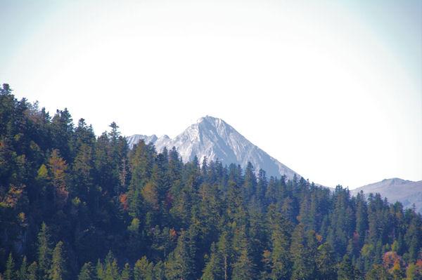 Le Pic du Midi de Bigorre apparaît au dessus du Bois de Bassiousses
