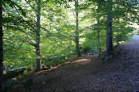 Le chemin descendant au Pont d'Amont