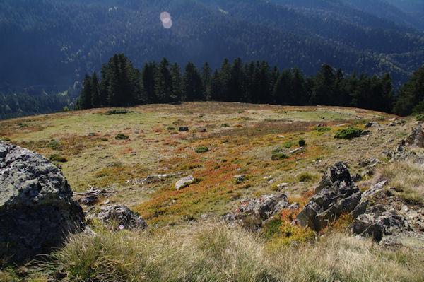 La Sapinière de Berne depuis le Mont Arrouy