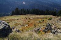 La Sapiniere de Berne depuis le Mont Arrouy