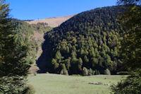 La Crete de la Pale au dessus de la Sapignere de Berne