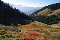 Couleur d'automne sous le Mont Ne, au dessus de la vallee de Bareilles