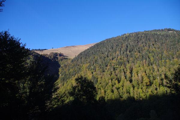Le Sommet du Peberé au dessus de la Sapinière de Laprède
